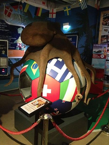 paul the octopus: You will be missed, paul the octopus, world cup predictions, famous octopus, famous psychic predictions, world football predictions