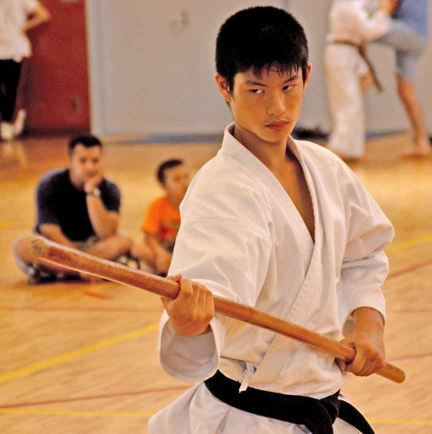 Top 10 Most Popular Sports in America, Martial Arts